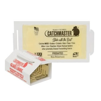 CATCHMASTER ECONO MOUSE & INSECT GLUEBOARD 150/BX