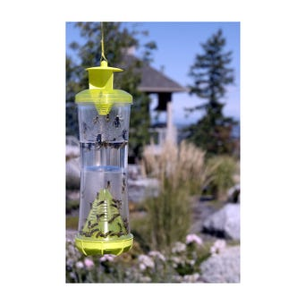 WHY REUSABLE WASP HORNET TRAP 4/CS