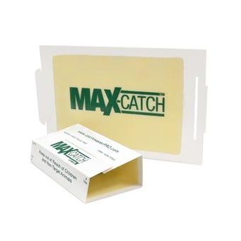 MAX CATCH GB 72MAX 72/BX PNUT