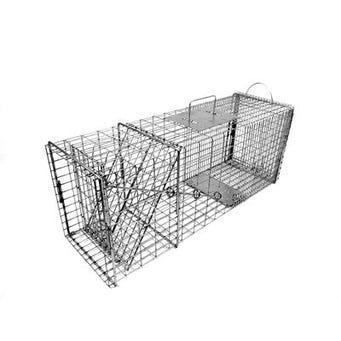 Raccoon Trap with Easy Release Door - Model 608