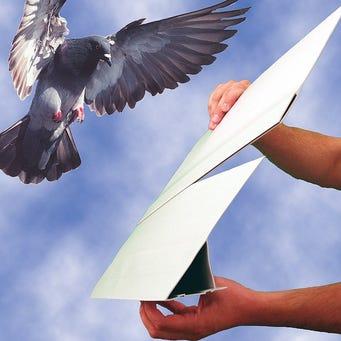 BIRD SLOPE EXTENDER GRAY 4'EACH 48'/BX