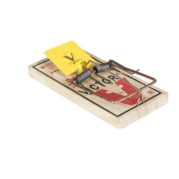 Mouse Trap M325